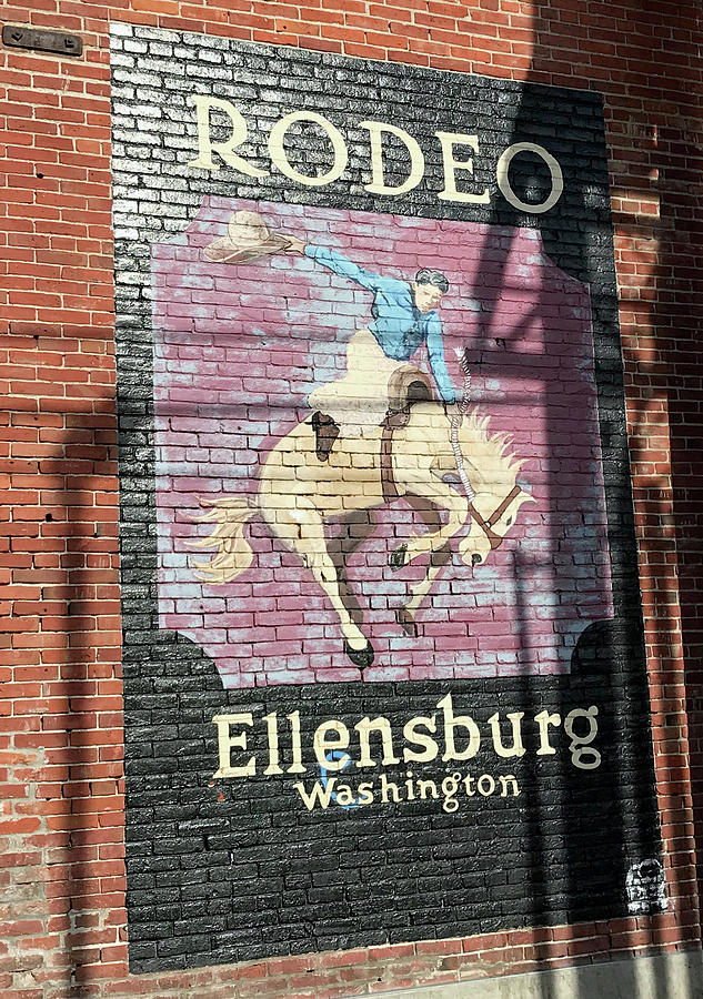 Ellensburg WA Rodeo by Elizabeth Rose