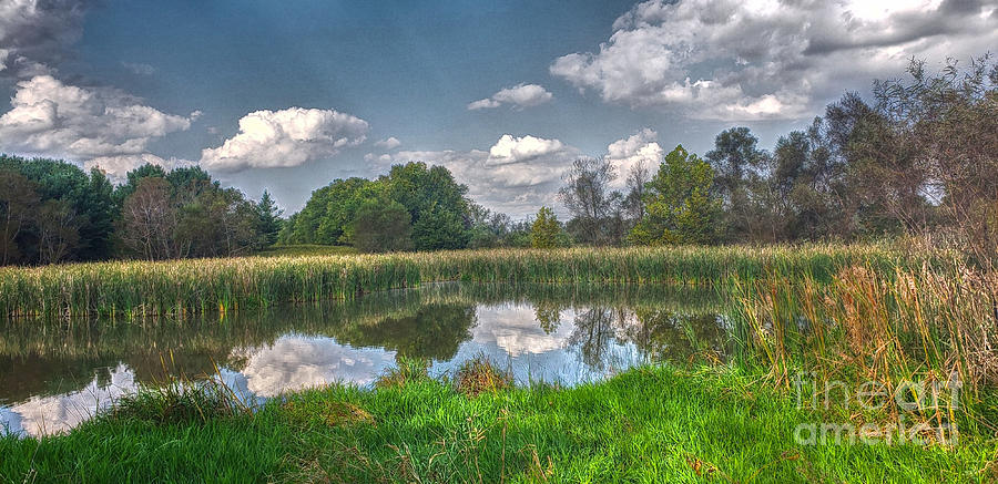 Ellis Pond by Jeremy Lankford