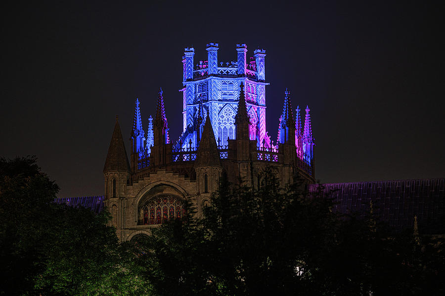 Ely Cathedral - Baby Loss Awareness week iii by James Billings