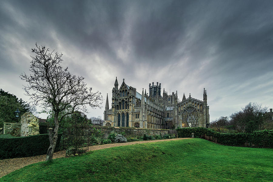 Ely Cathedral from Almonry Gardens by James Billings