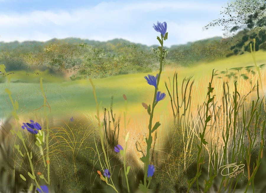 Ely's View by Joel Deutsch