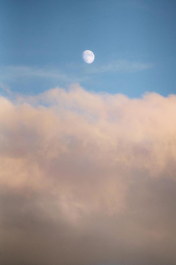 Emergence by Nicholas Morris
