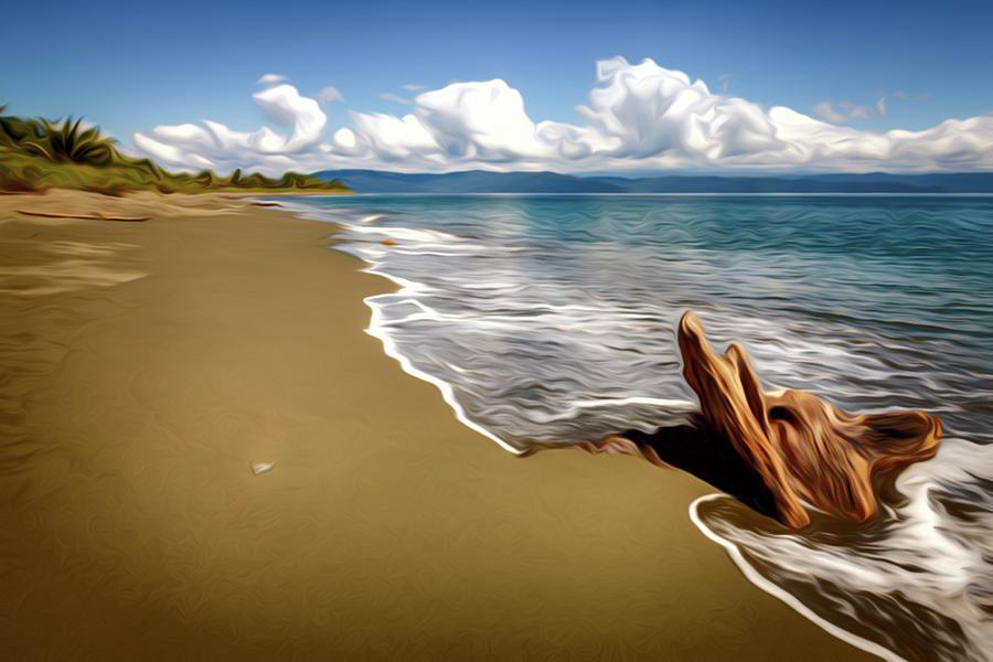 Empty Beach In Costa Rica Da Photograph