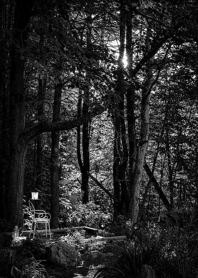 Empty Chair and Bird Feeder by Bob Orsillo