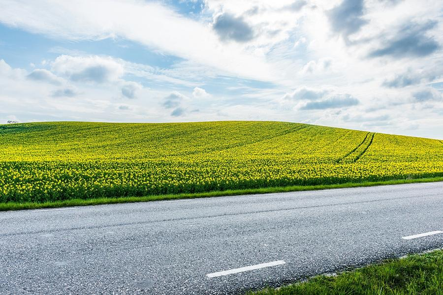 Empty Country Road Along Landscape Photograph by Jimmy Nilsson / Eyeem
