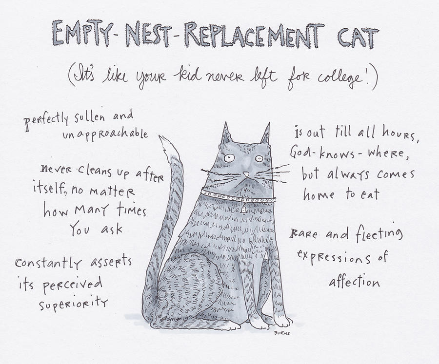 Empty Nest Replacement Cat Drawing by Teresa Burns Parkhurst