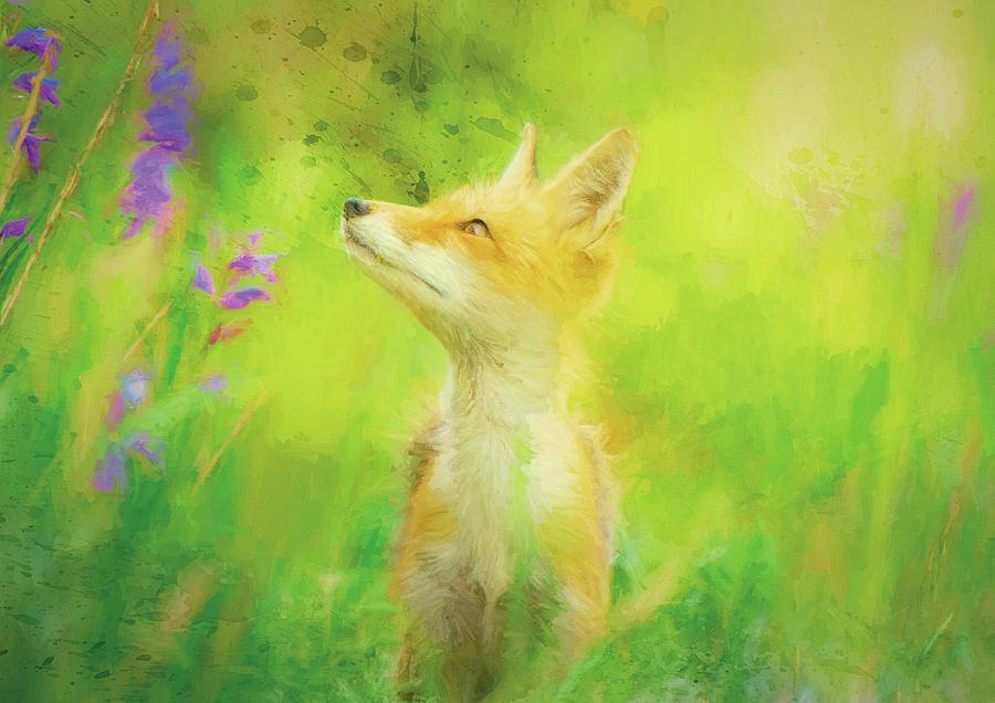Design Mixed Media - Enchanted Fox by Amanda Lakey