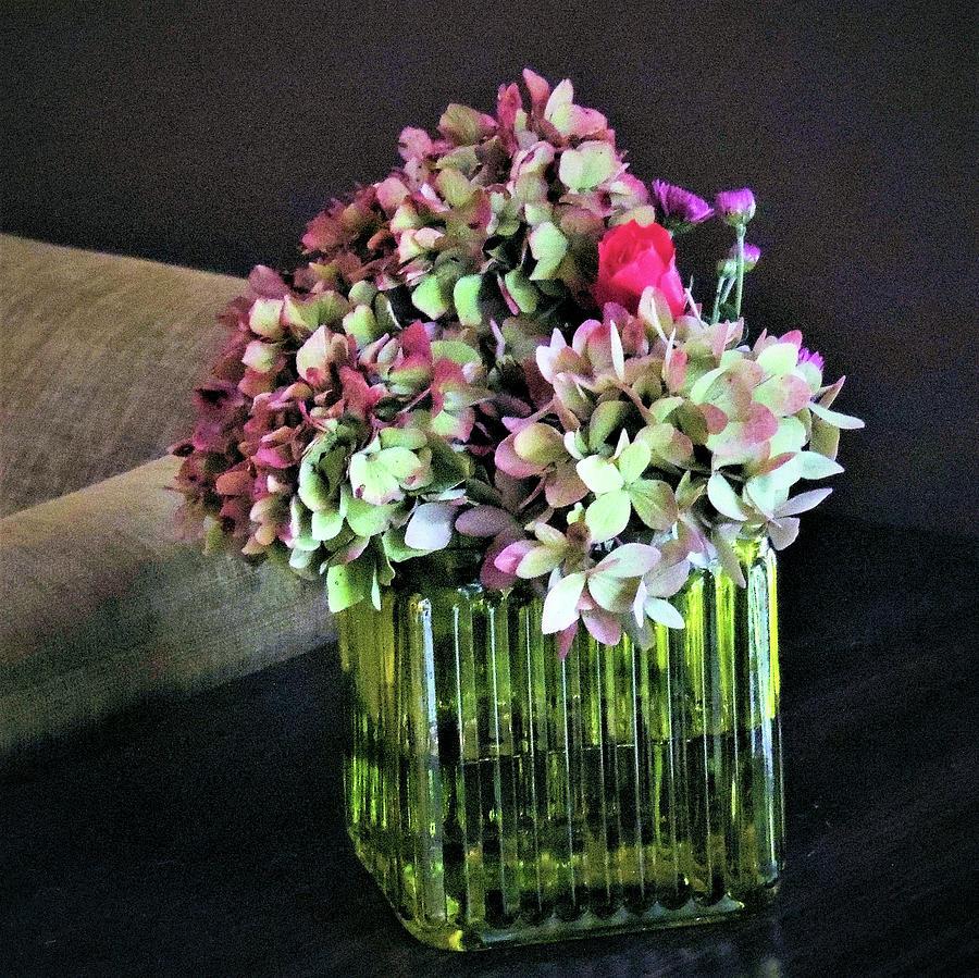 End Of Season Flowers Photograph