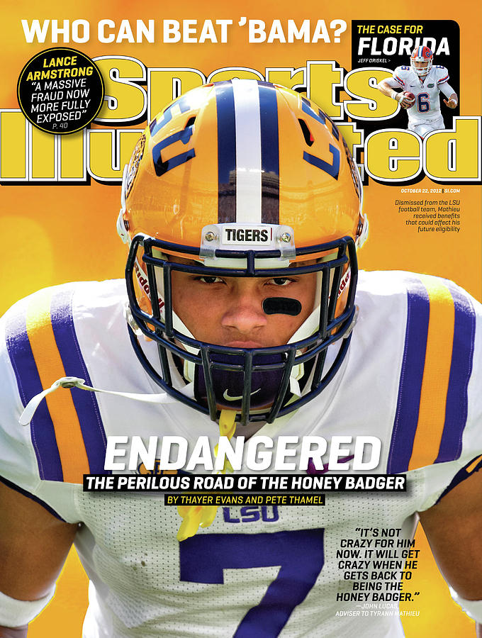 Endangered The Perilous Road Of The Honey Badger Sports Illustrated Cover Photograph by Sports Illustrated
