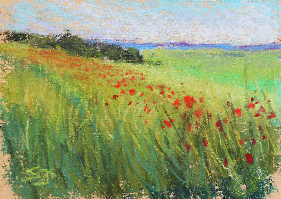 Endless Meadow by Susan Jenkins
