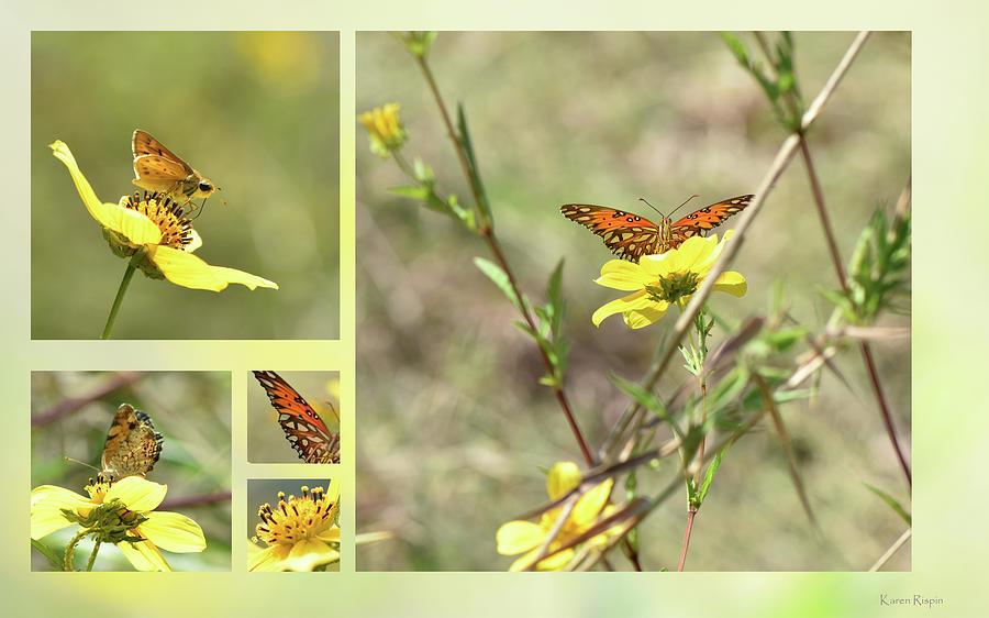 Englemans and Butterflies by Karen Rispin