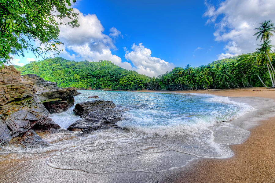 Englishman's Bay, Tobago 2 by Nadia Sanowar