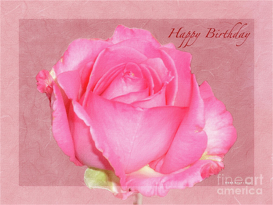 Enjoy Happy Birthday Roses Photograph