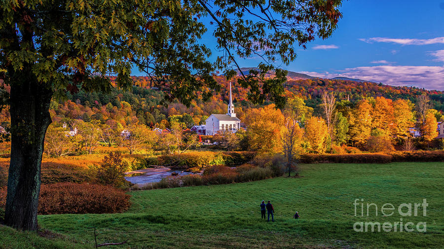 Enjoying the view. by Scenic Vermont Photography