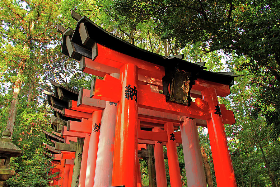Entrance to Torii Gates - Fushimi inari-taisha Shrine - Kyoto, Japan  by Richard Krebs