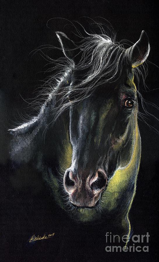 Equine portrait 2019 03 31 by Angel Ciesniarska