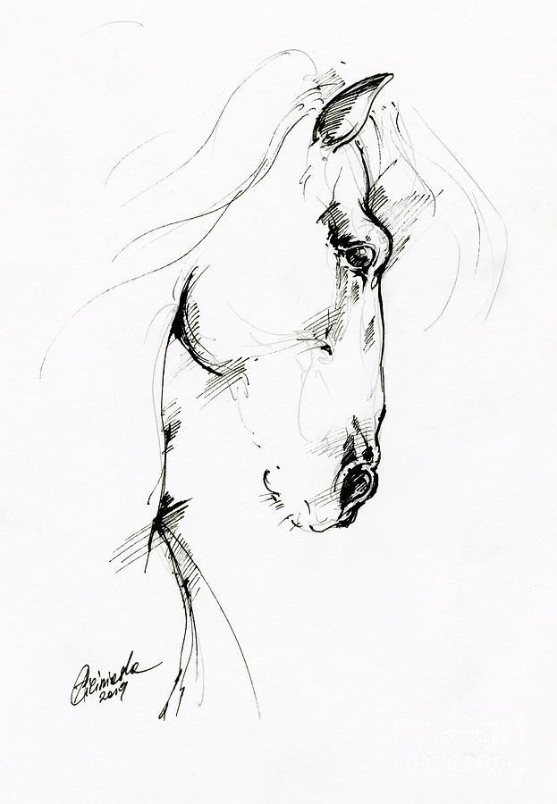 Equine sketch 2019 04 28 by Angel Ciesniarska