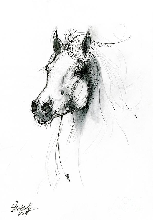 Equine sketch 2019 04 28 c by Angel Ciesniarska