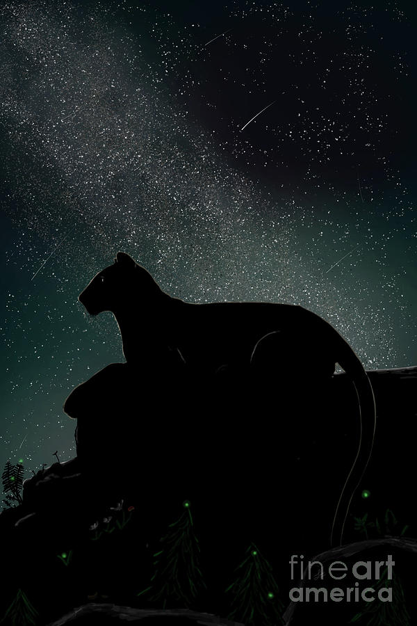 Erie Mountain Lion Milky Way Meteor Shower by the Ford Family