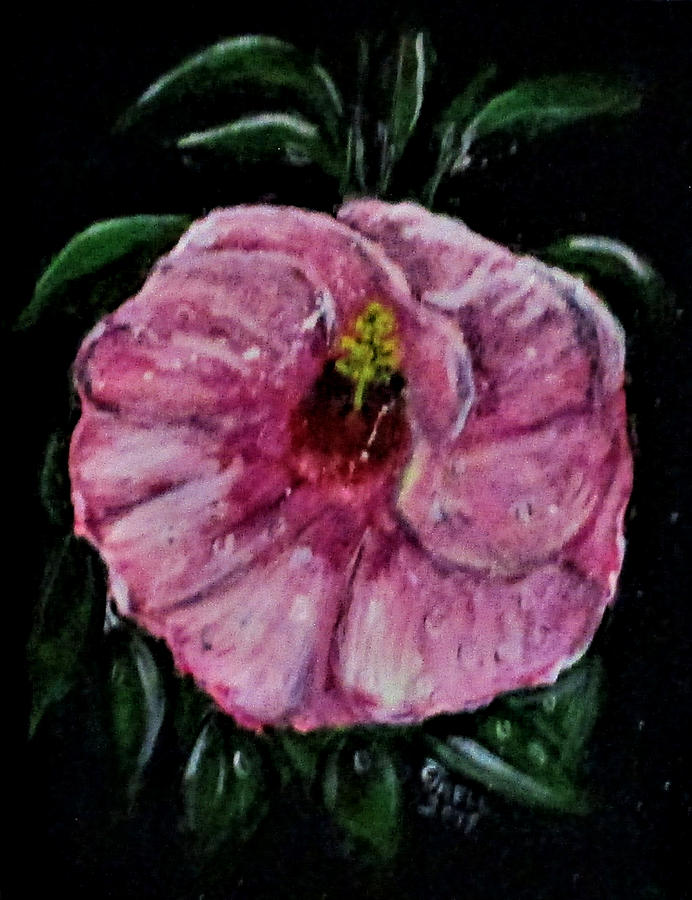 Erika's Magenta Flower by Clyde J Kell
