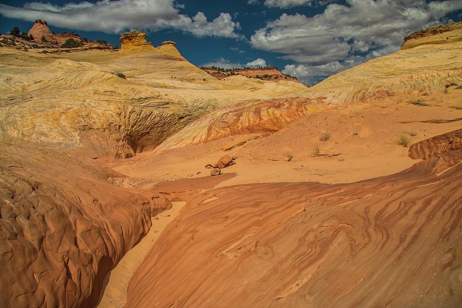Escalante Color-scape #1 by Doug Scrima