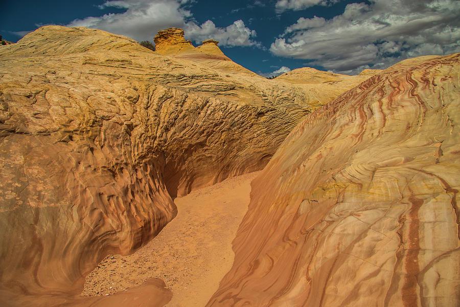 Escalante Color-scape #2 by Doug Scrima