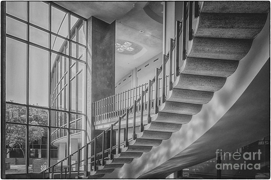 Escalate by Natural Abstract Photography