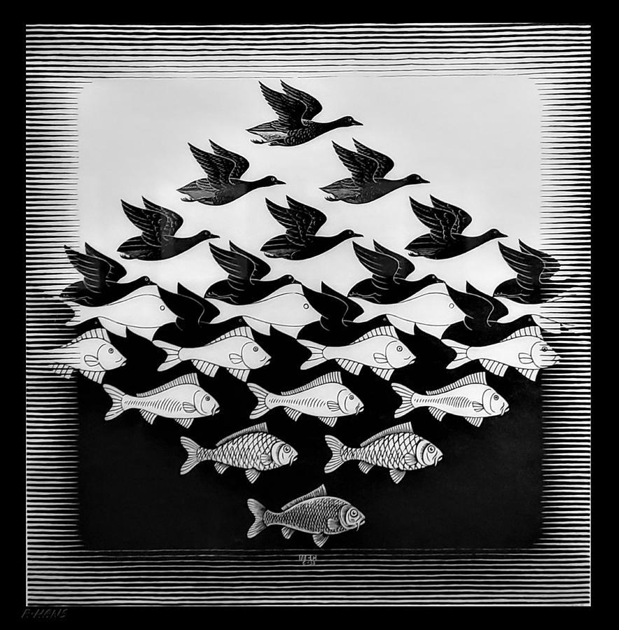 Escher 115 Photograph