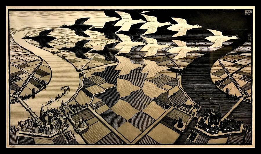 Escher 116 Photograph