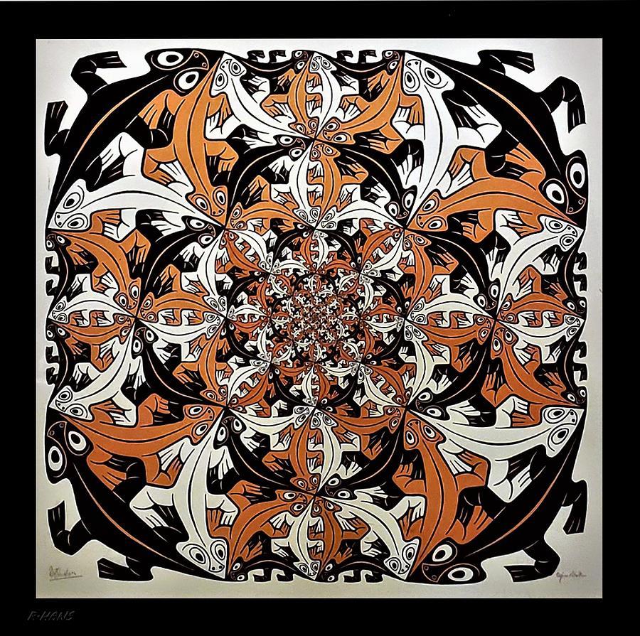Escher 65 Photograph