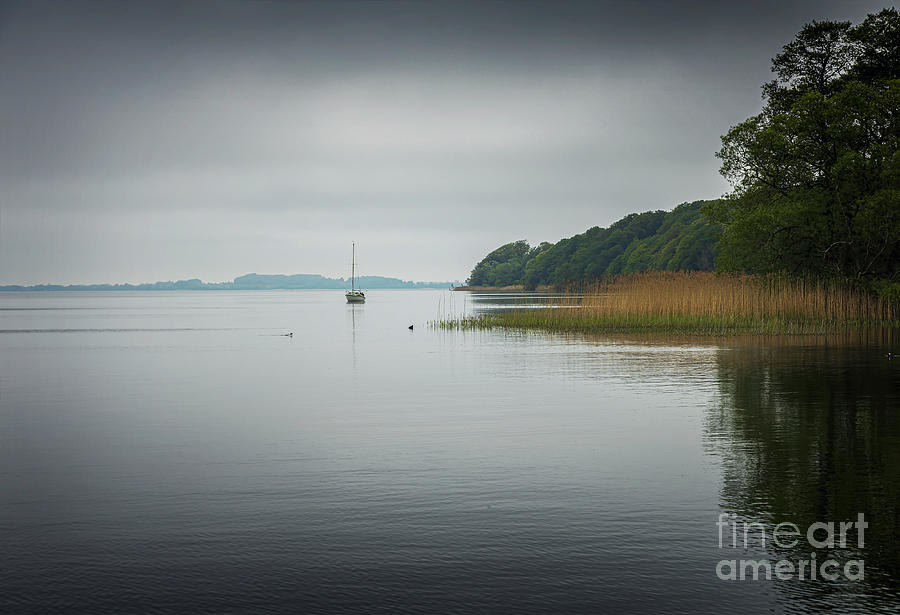 Esrum lake Denmark by Sophie McAulay