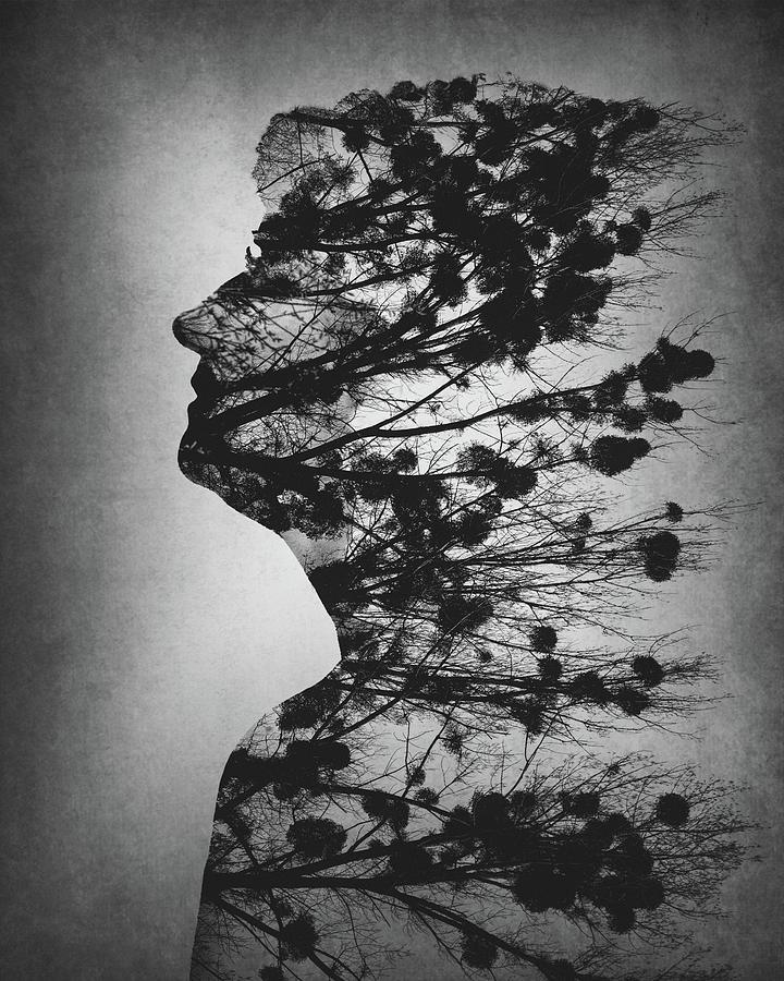 Essence Of Life by Dusan Macko