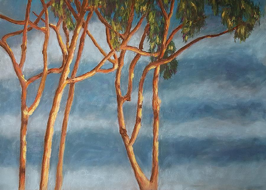 Landscape Pastel - Eucalyptus Storm by Ellen Kirwan