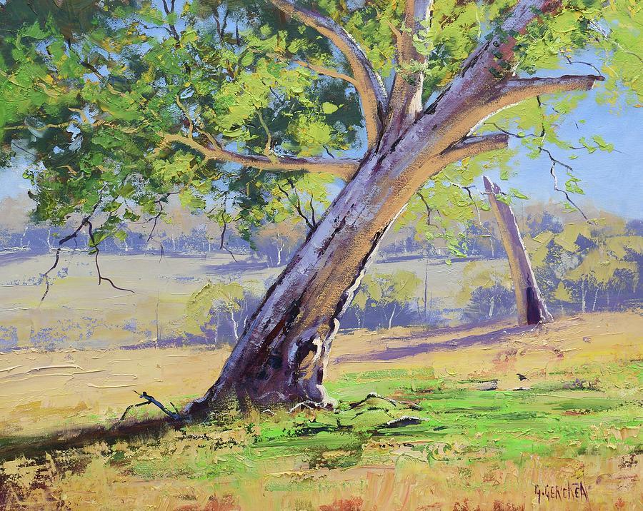 Eucalyptus Tree Australia Painting