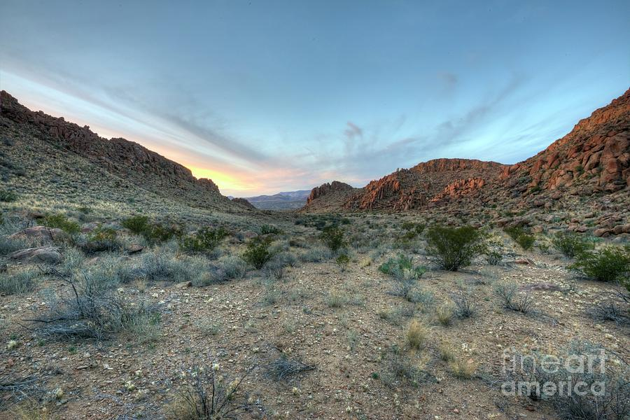 Desert Photograph - Evening in the Desert by Joe Sparks