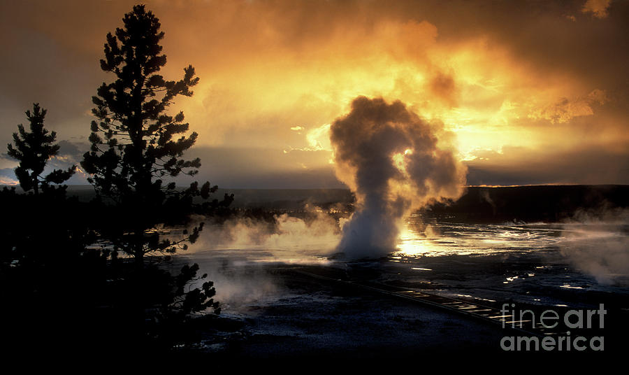 Evening Magic - Yellowstone National Park by Sandra Bronstein