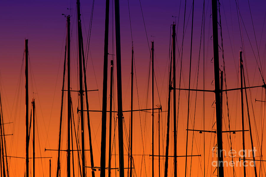 Evening Masts by Sonya Lang
