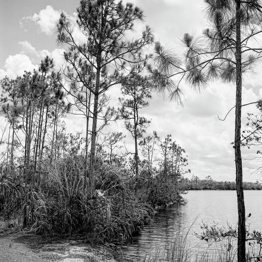 Everglades Lake 041901 by Rudy Umans