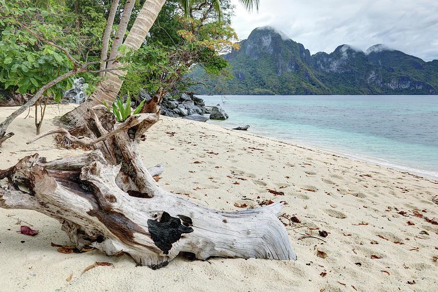 Exotic Beach Photograph by Vuk8691