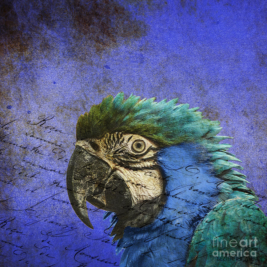 Duvet Mixed Media -  Blue Exotic Parrot- Pirates Of The Caribbean by Dezigners Agency