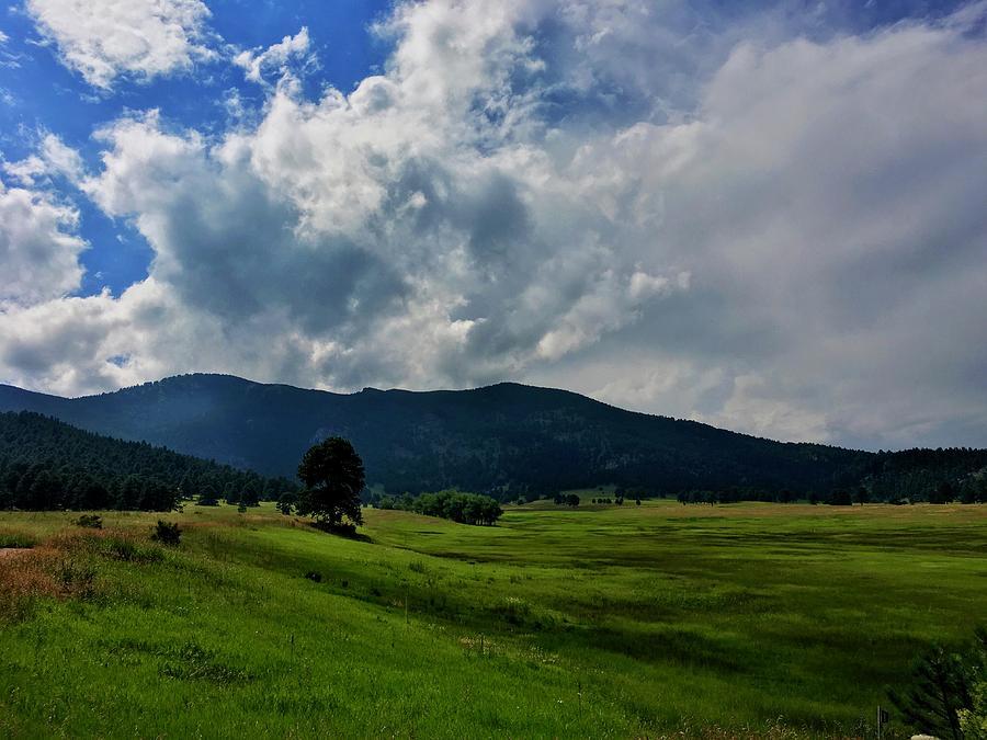 Expansive Skies Elk Meadow by Dan Miller