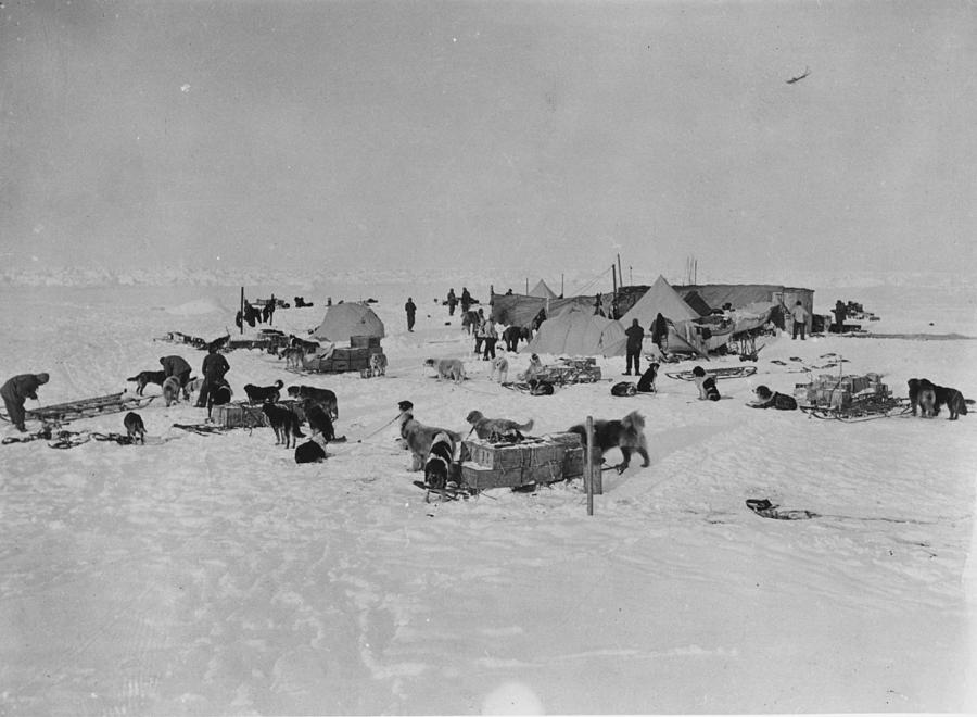 Expedition Camp Photograph by Hulton Archive