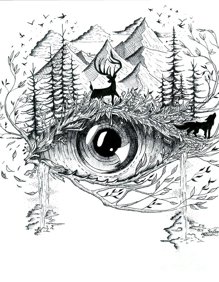 Eye Of Nature Drawing By Ben Graf
