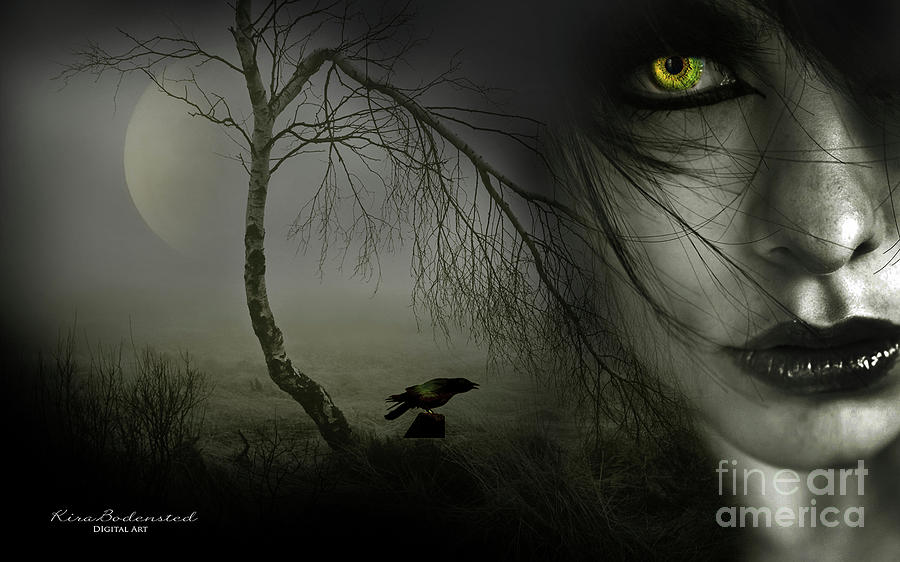 Eyes in the Night by Kira Bodensted