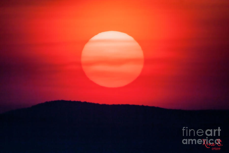 Sun Photograph - Eyes in the Sun by Christine Segalas