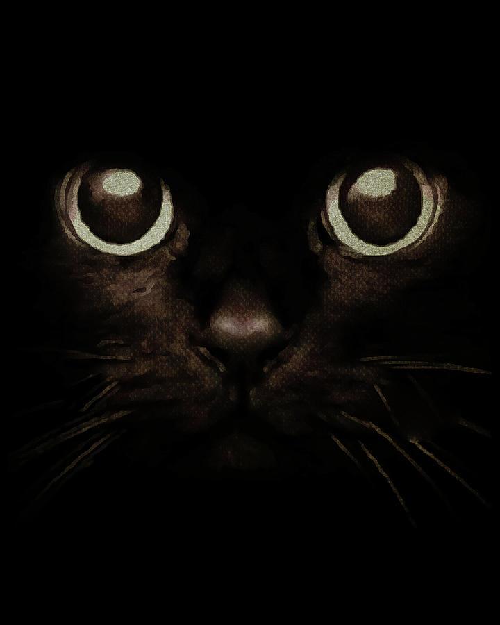 Eyes of a Kitten by Jan Keteleer
