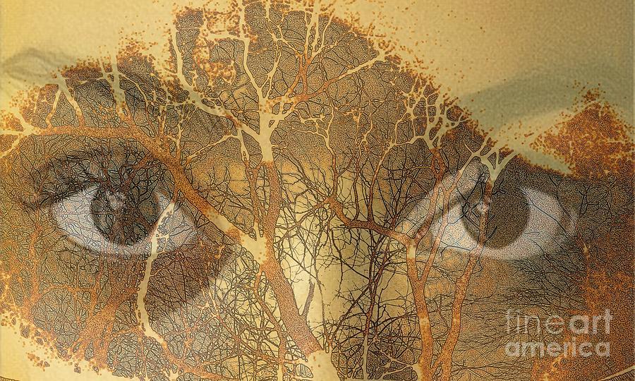 Eyes of the Forest by Jodie Marie Anne Richardson Traugott          aka jm-ART