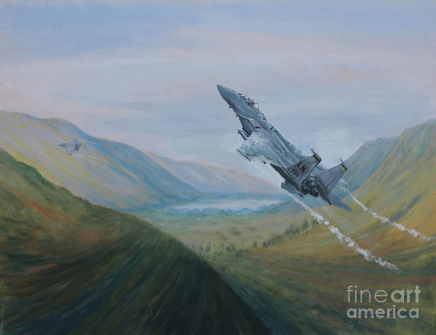 F15 Eagle Flying Low in the Welsh Valleys by Elaine Jones