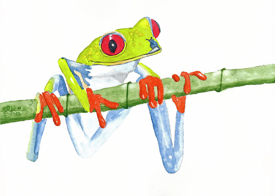 Fabio T Frog by Richard Stedman