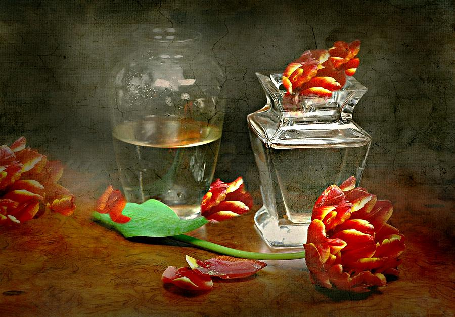 Fainting Petals by Diana Angstadt